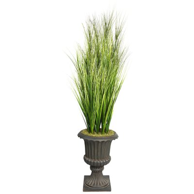 Tall Onion Grass with Twigs in Fiberstone Planter