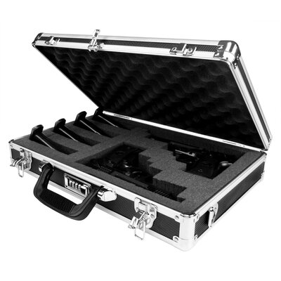Common Sense Industries, Inc. Guardian Double/Triple Pistol Case