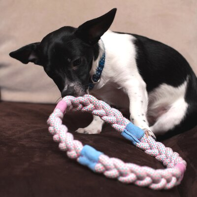 Ringa Rope Toy