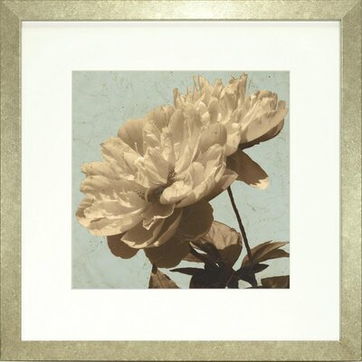Floral Living Antiqued Floral and Sky I Framed Graphic Art