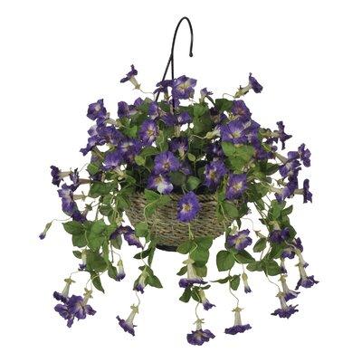 house of silk flowers artificial petunia hanging plant in basket reviews wayfair. Black Bedroom Furniture Sets. Home Design Ideas