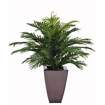 House of Silk Flowers Inc. Artificial Parlor Fern Desk Top Plant in Zinc Planter
