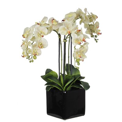 House of silk flowers phalaenopsis orchid arrangement in Christmas orchid arrangements