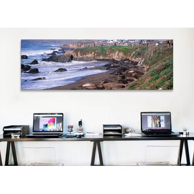 iCanvasArt Panoramic 'Elephant Seals on the Beach, San Luis Obispo County, California' Photographic Print on Canvas