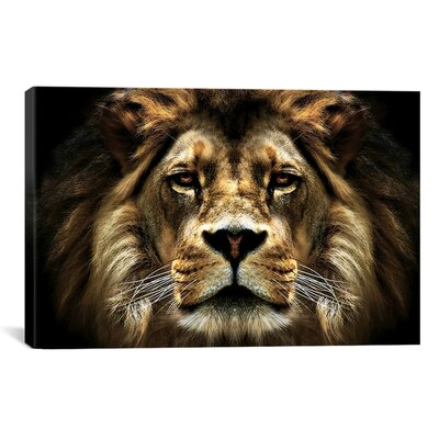 iCanvasArt The Lion from SD Smart Painting Print on Canvas