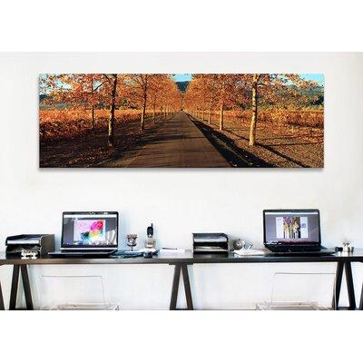 iCanvasArt Vineyards Along a Road, Beaulieu Vineyard, Napa Valley, California, USA Canvas Print Wall Art
