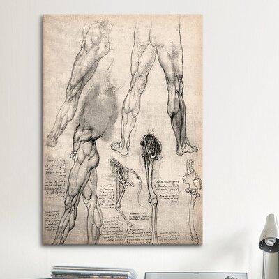 iCanvasArt 'Sketchbook Studies of Human Legs' by Leonardo da Vinci Painting Print on Canvas