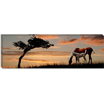 iCanvasArt Horse Mare and a Foal Grazing by Tree at Sunset Canvas Wall Art
