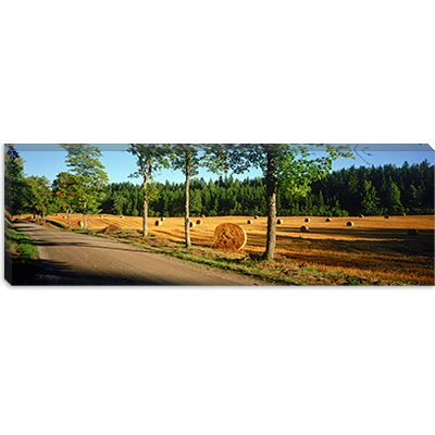 iCanvasArt Hay Bales in a Field, Flens, Sweden Canvas Wall Art