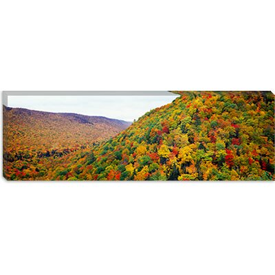 iCanvasArt Mountain Forest in Autumn, Nova Scotia, Canada Canvas Wall Art