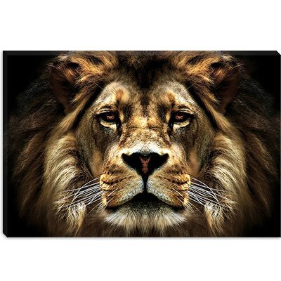 iCanvasArt The Lion from SD Smart Collection Canvas Wall Art