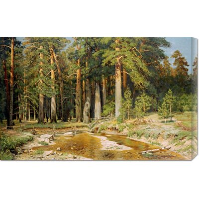 'The Mast-Tree Grove, Study' by Ivan Ivanovich Shishkin Stretched Canvas Art