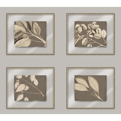 Rheede's on Taupe Linen I Wall Art Collection
