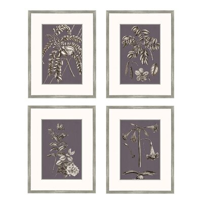 Buchoz Flowers Framed Graphic Art in Amethyst