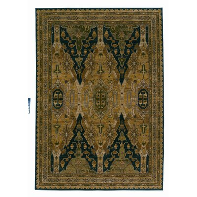 Tommy Bahama Rugs Home Nylon Cape Jewel Ebony Rug