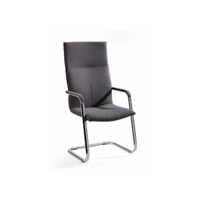 Artifort Montana Chair