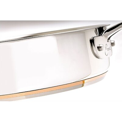 Emerilware by All Clad Stainless Fry Pan
