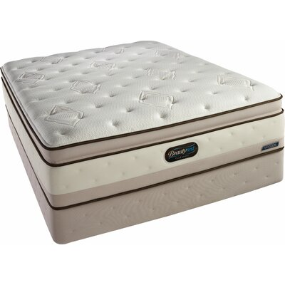 Simmons TruEnergy Adalee Plush Firm Memory Foam Top Mattress
