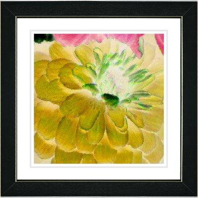 "Studio Works Modern ""Yellow Dahlia"" by Zhee Singer Framed Painting Print"