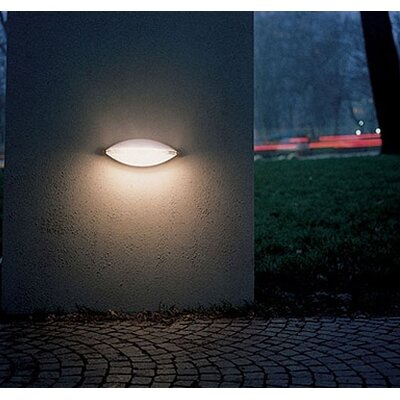 Artemide Mitasi Indoor/Outdoor Wall and Ceiling Light