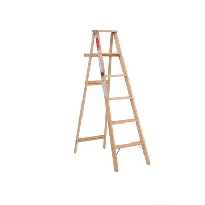 Michigan Ladder 5' Household Step Ladder