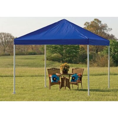"ShelterLogic Decorative 4 Leg Canopy 2"" Frame"