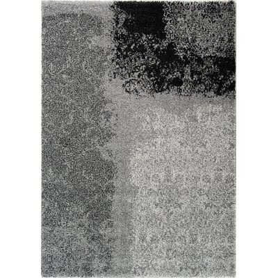 Kalora Nuance Grey Transitional II Rug
