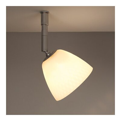 Bruck Uni Light 1 Light Pira Spot Light