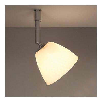 Bruck Lighting Uni Light Pira Spot Light