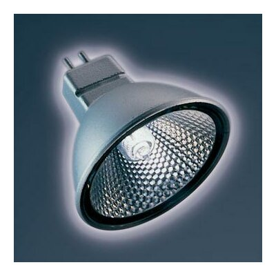 Bruck Lighting Ushio Reflekto Halogen Light Bulb