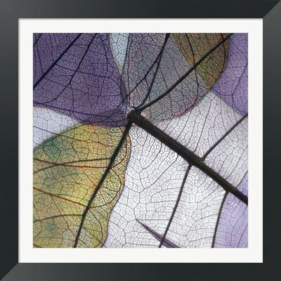Purple and Grey Leaves II by Jim Christensen Framed Photographic Print