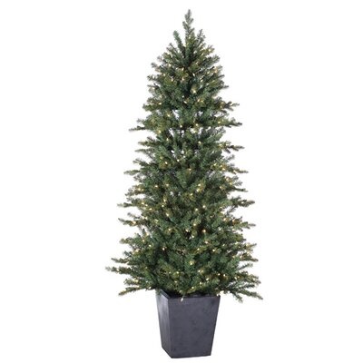 Sterling Inc. 6' Natural Cut Lenox Pine Christmas Tree with 350 Clear Lights with Pot and Stand