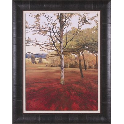 Art Effects Noix Framed Artwork