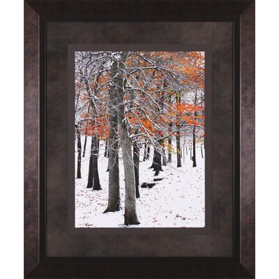 Art Effects Snow Fall II and III by Burney Lieberman Framed Photographic Print