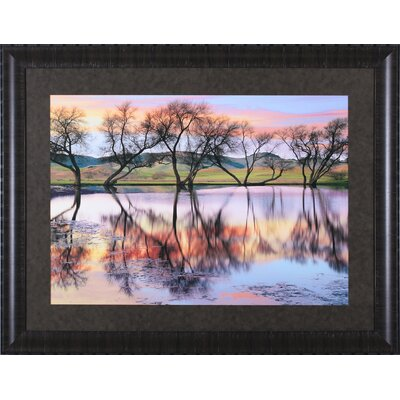 ''Lake Reflection'' Wall Art