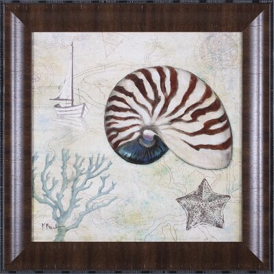Discovery Shell I Wall Art