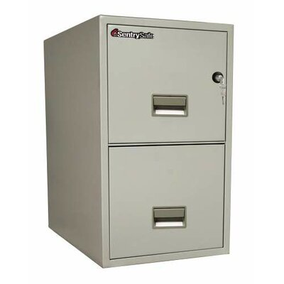 Sentry Safe SentrySafe 2-Drawer  Letter File
