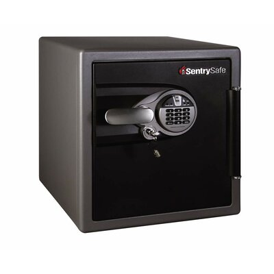 Sentry Safe 1-Hour Fireproof Biometric Lock Security Safe