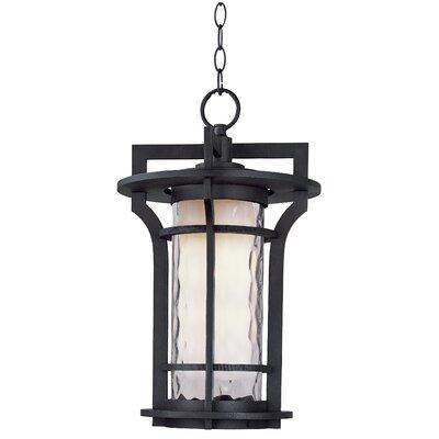 Wildon Home ® Oakville EE 1 Light Outdoor Hanging Lantern