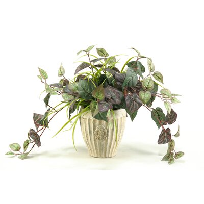 D & W Silks Oxalis Ivy Floor Plant in Decorative Vase