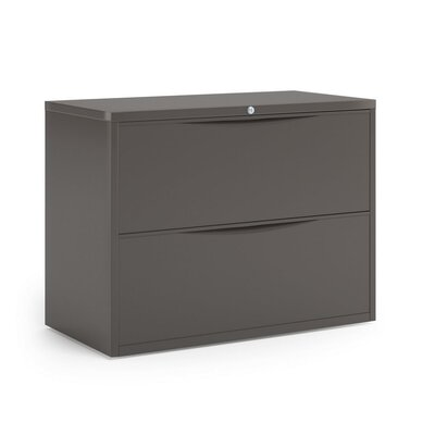 Mayline Group CSII 2-Drawer  File