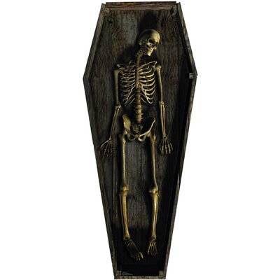 Advanced Graphics Skeleton Casket  Stand-Up