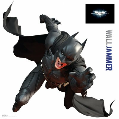 Advanced Graphics Dark Knight Rises Batman Wall Jammer