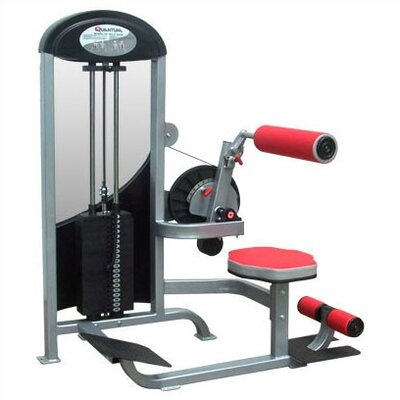 Quantum Fitness Phantom Commercial Core Gym