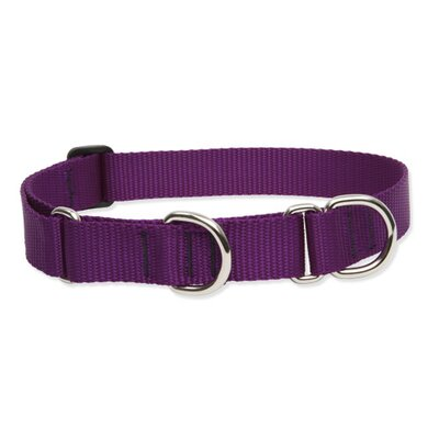 Lupine Pet Solid Color Adjustable Combo Collar