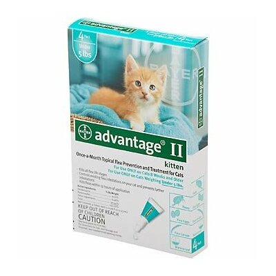 Flea Treatment for Cats (4 Pack)