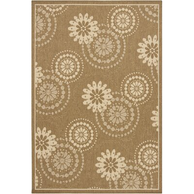 Chandra Ryan Brown Rug
