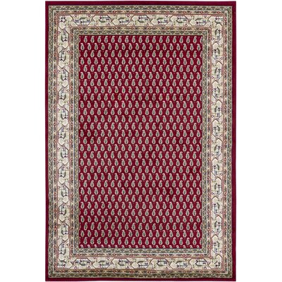 Chandra Taj Red Rug