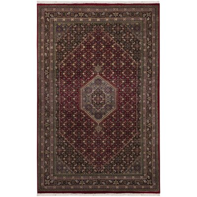 Chandra INT Rug