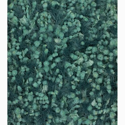 Chandra Rugs Riza Solid Rug